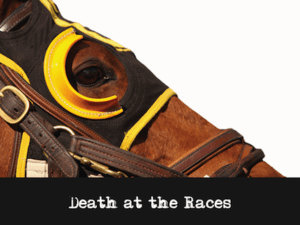 Mystery Theme: Death at the Races